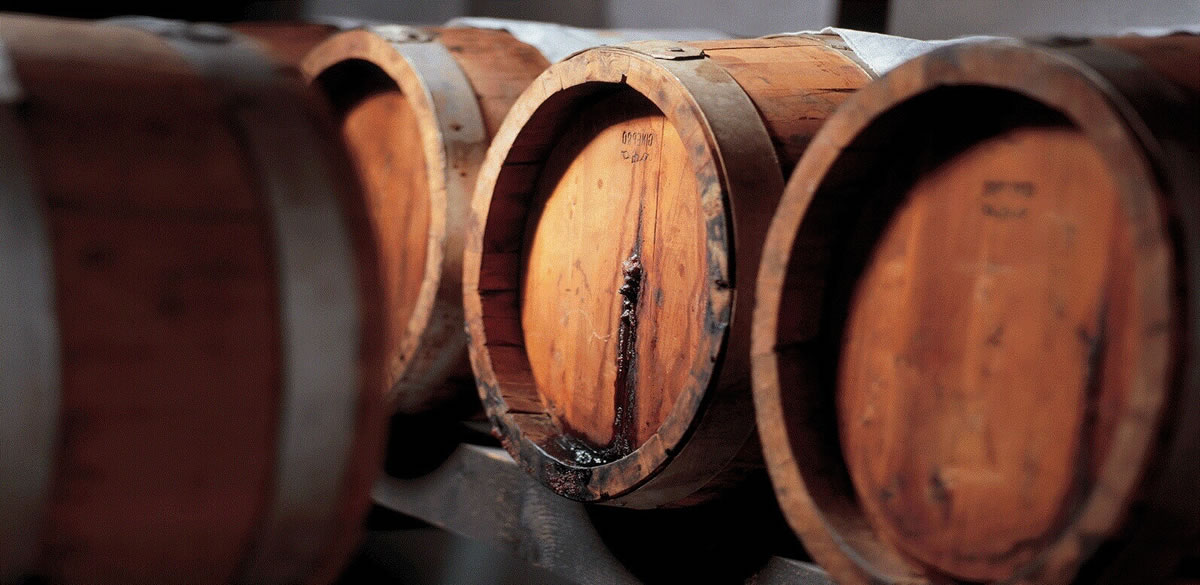 aceto-balsamico-vignola
